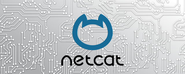 Netcat: Guide to Swiss Army Knife 2019 - Forensics - Malware